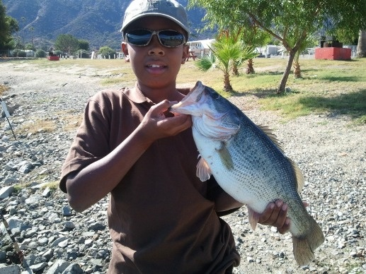 2011-11 Nicholas Johnsons's Largemouth Bass